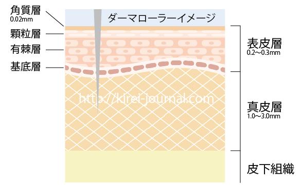 ダーマローラーの治療イメージと肌断面図