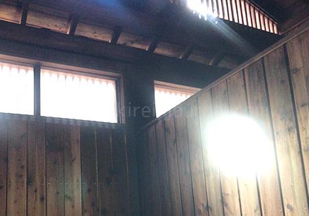 天井から降り注ぐ明かりも良い雰囲気です。 貸切感満載でおすすめですよ。